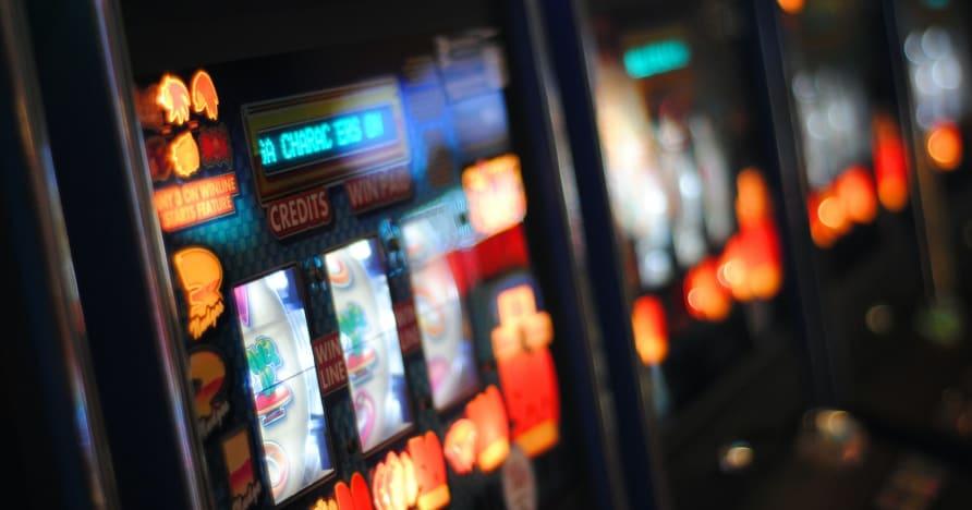 """""""Play'n GO Roar"""" į 2021 m. Su visiškai naujais lošimų automatų pavadinimais"""